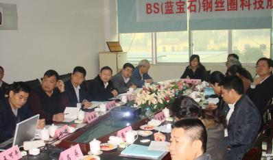重庆金猫BS(蓝宝石)钢丝圈项目科技成果通过鉴定