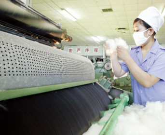 听听农业部棉花专家顾问组专家的分析 与全行业息息相关